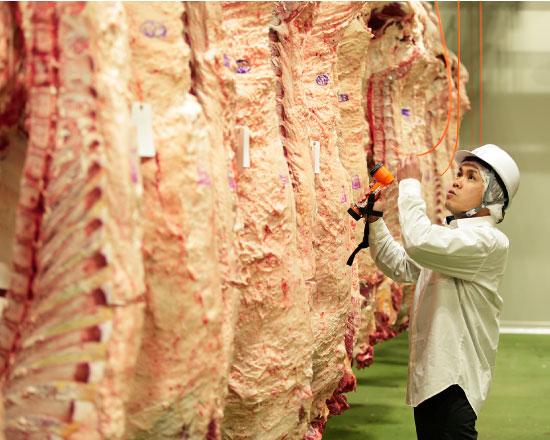 肉のマルシン 他店との違い 一頭買いだから違う